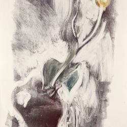 Tulip-in-a-vase-2